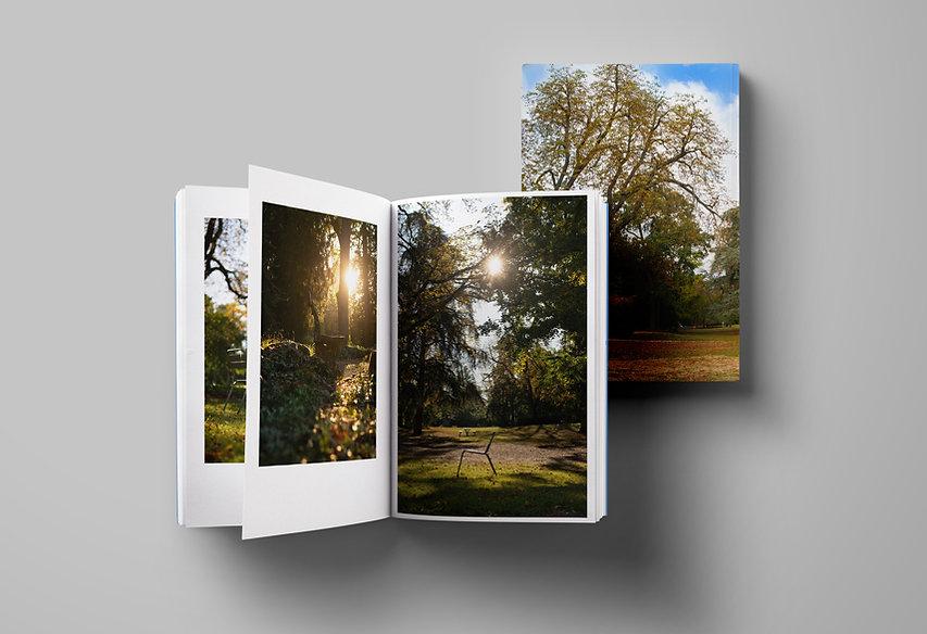 Parks in Basel Inhalt