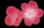 deuf fleurs e cerisier.png