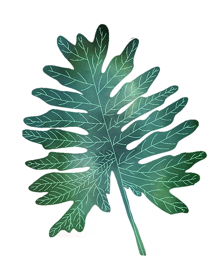 feuille foret.png