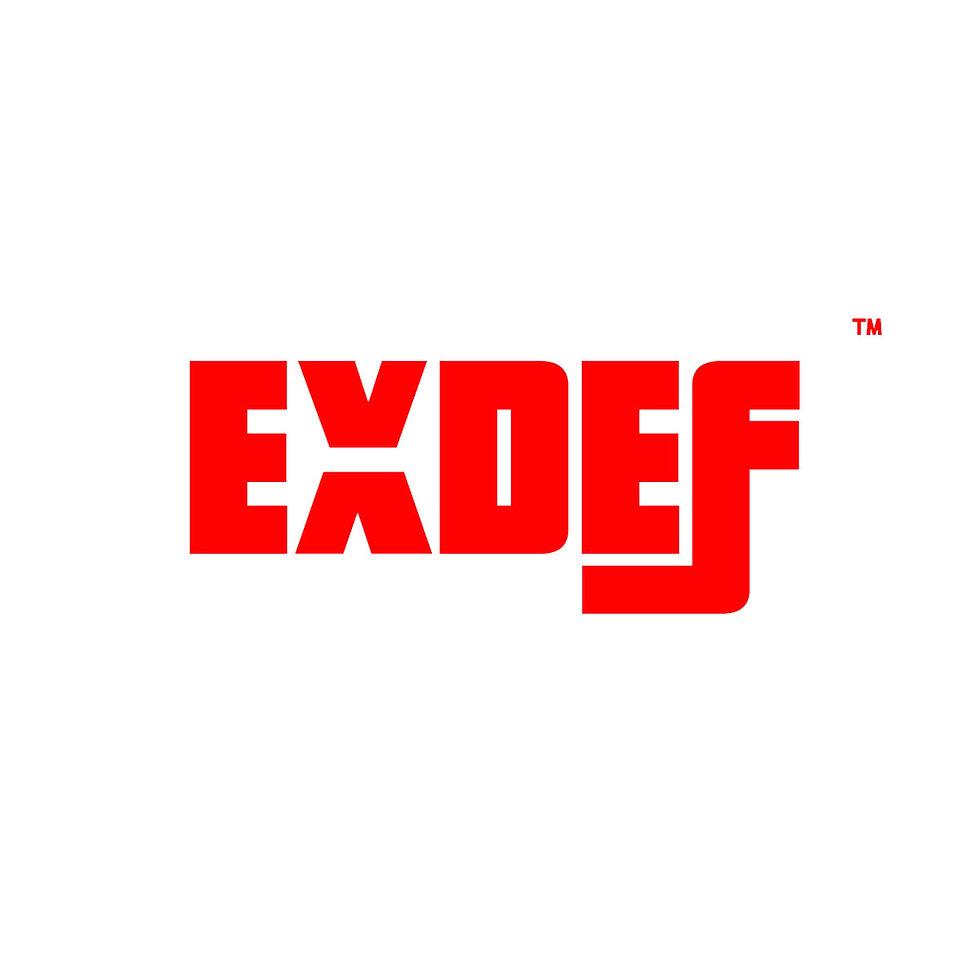 lowe exdef logo.jpg