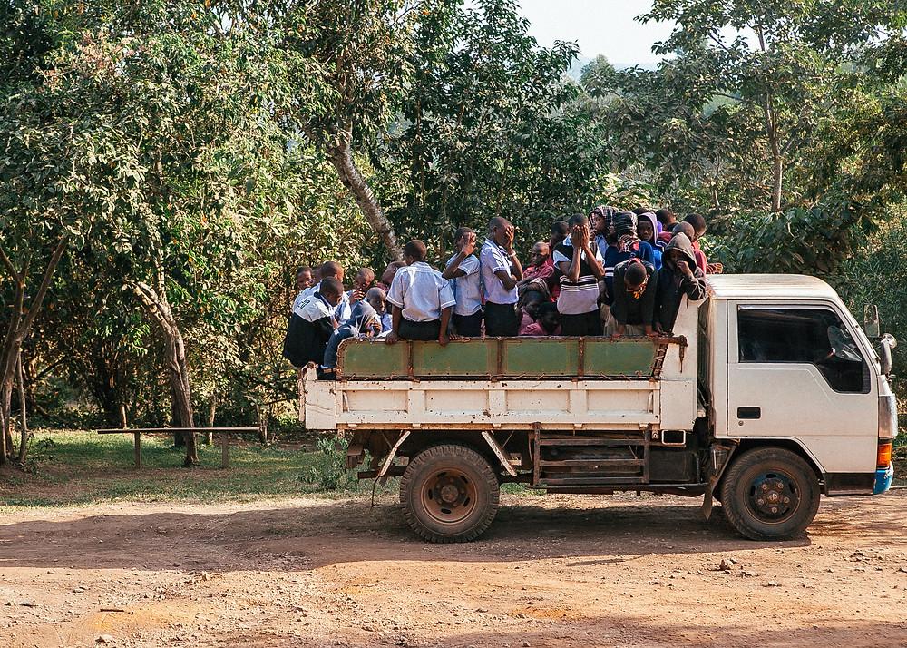 Kibale Rainforest, Uganda