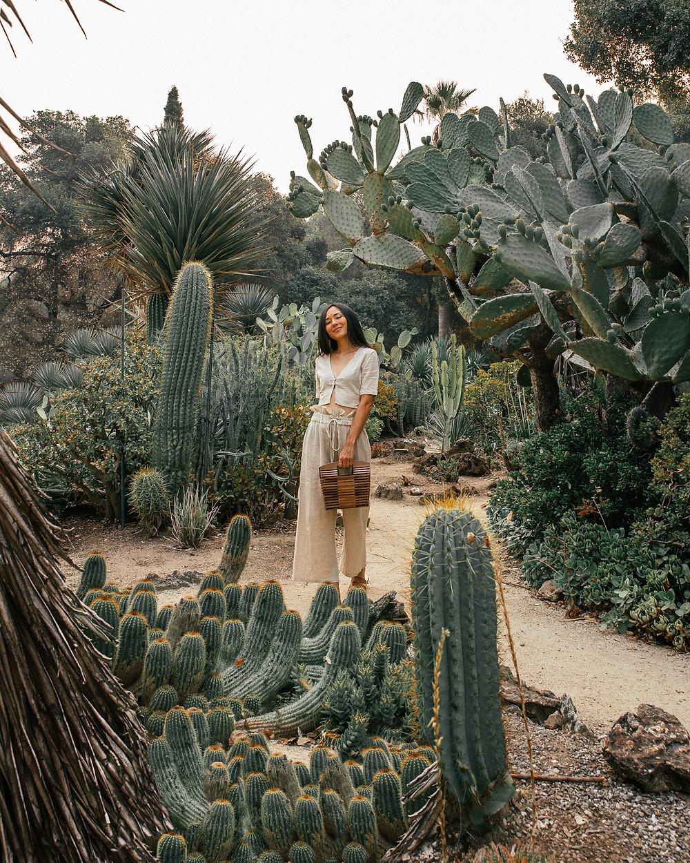Arizona Cactus Garden, Stanford, Palto Alto, California