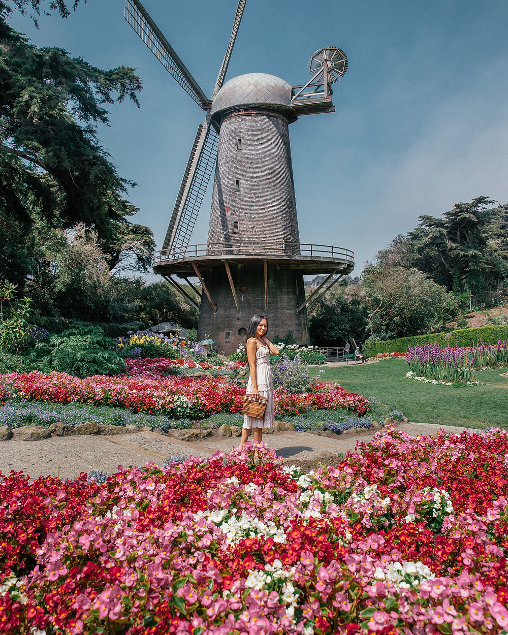 Queen Wilhelmina Tulip Garden, San Francisco, California