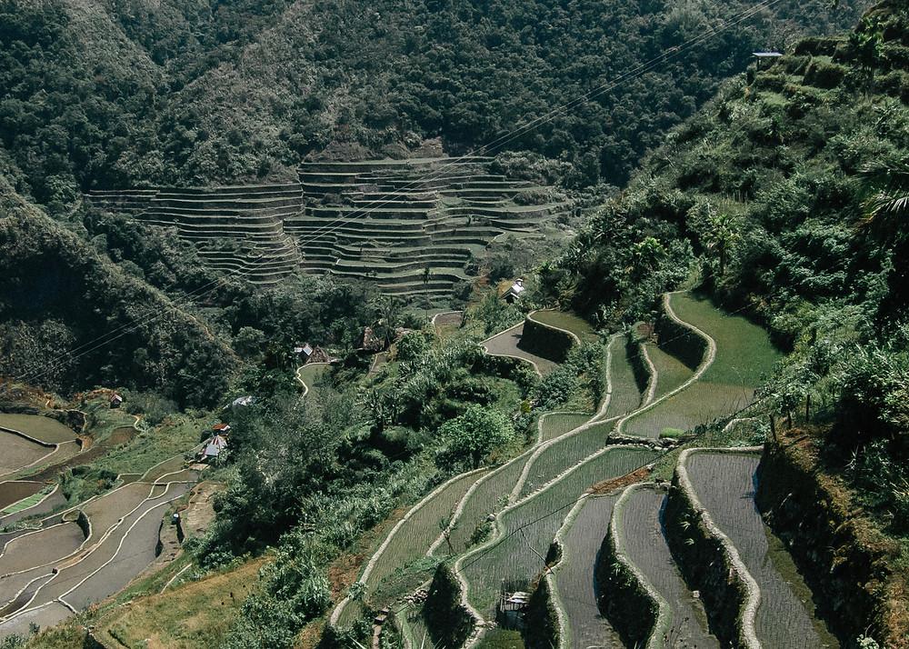 Batad Rice Terraces, Banaue, The Philippines