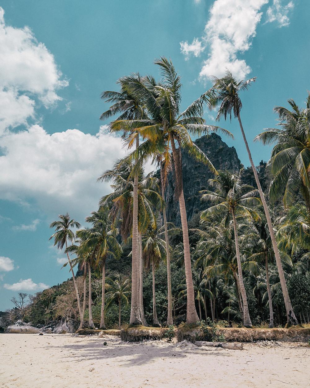 Pinagbuyutan Island, El Nido, Palawan, The Philippines