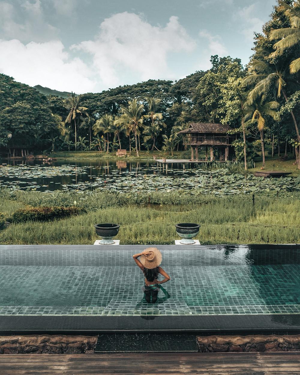 Four Seasons Resort Chiang Mai Pool, Rice Fields, Thailand