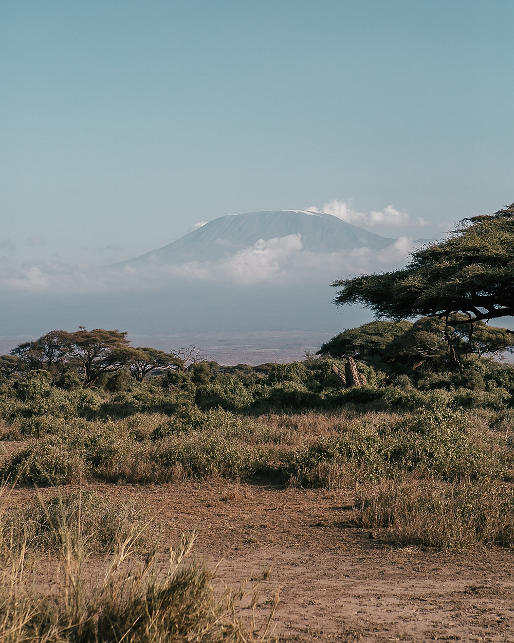 Mt. Kiliminjaro, Kenya, African Safari
