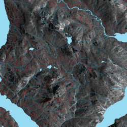 Radarsat-1 with Roads and Rivers