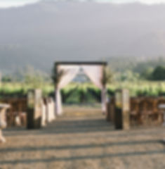 Vineyard Ceremony (2).jpg