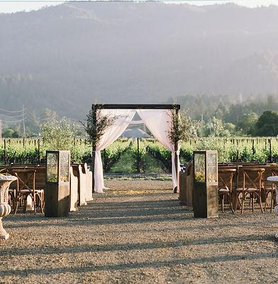 Vineyard Ceremony (2).jpg
