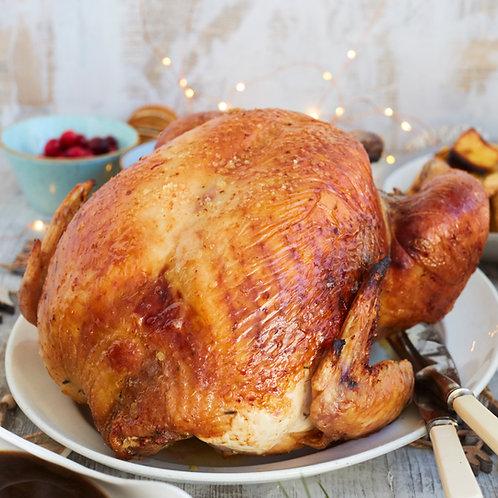 Whole KellyBronze Turkey 7kg