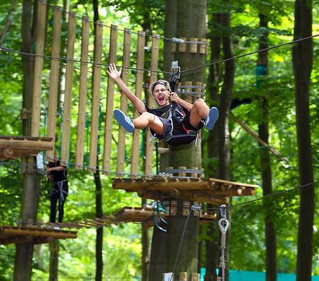 Gorilla park action.jpg