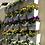 Thumbnail: Jardín Vertical Natural Kit 25 Macetas