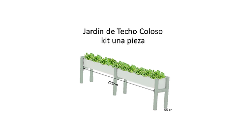 JARDIN COLOSO 2.png