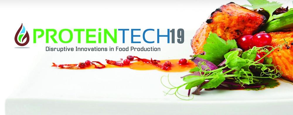proteintech plant protein