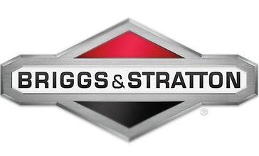 Briggs logo_edited.jpg
