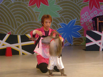 Japanese monkey show SARUMAWASHI by Put