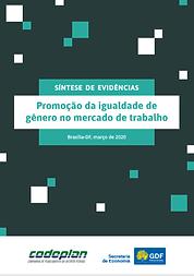promoção da igualdade.png
