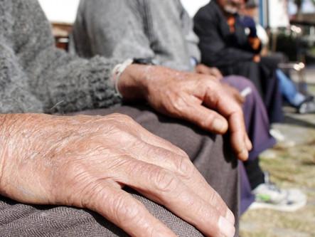 Instituto Veredas apoia Codeplan em sumário executivo sobre população idosa no DF