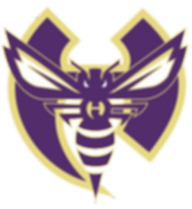 2019-2020%2520New%2520Logo%2520with%2520H%2520and%2520Hornet%2520No%2520background_edited_edited.png