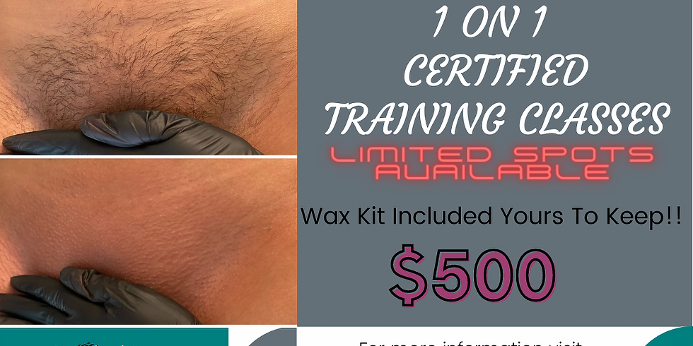 Wax Certification Course