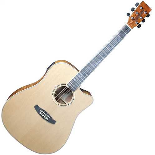 Tanglewood Discovery DBT FMH