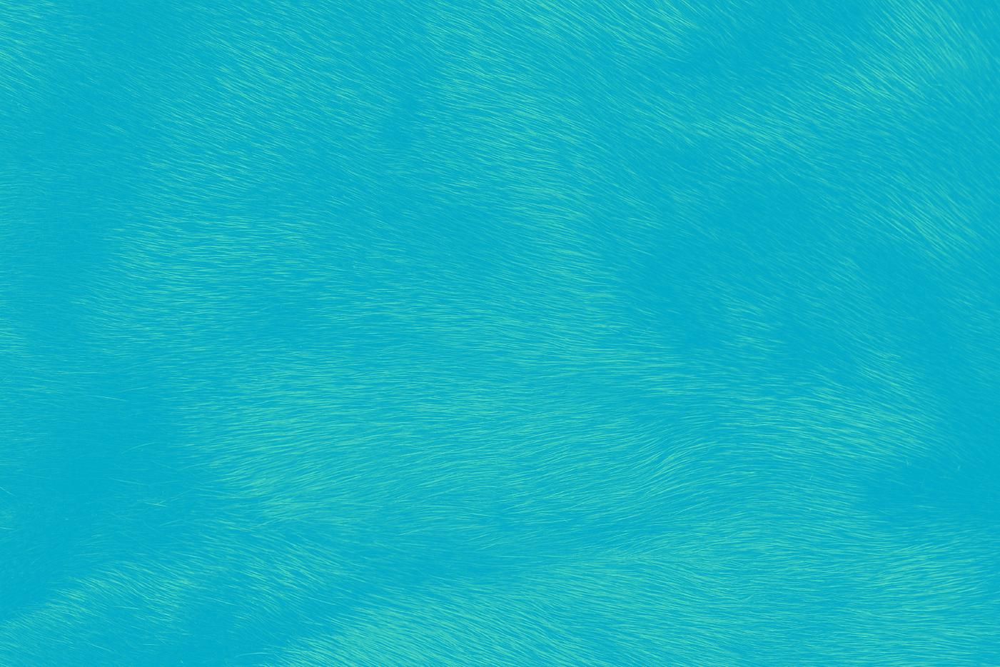 Blue Fur.png