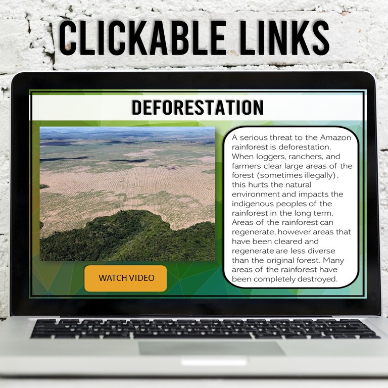 A Virtual Field Trip for Earth Day that covers deforestation