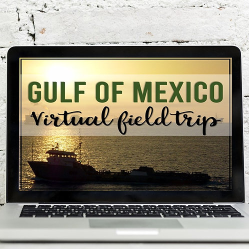 Gulf of Mexico Virtual Field Trip (Google Earth Exploration)