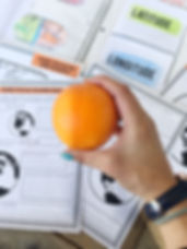 Latitude and Longitude Demo Lesson with Oranges
