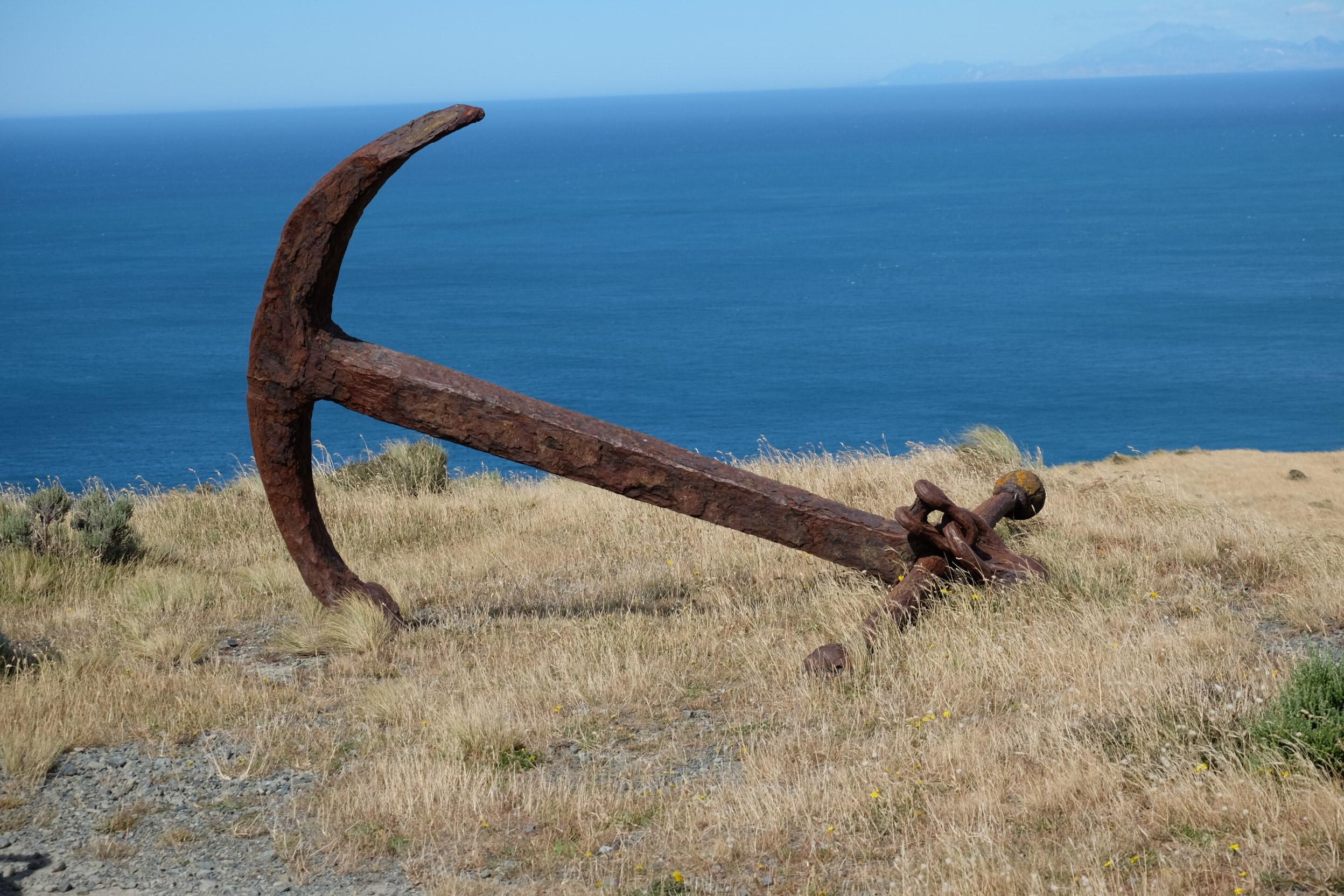 5 Hour Coastal Tour of Wellington