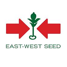 logo EWS.png