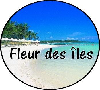 Galet parfumé Fleur des îles