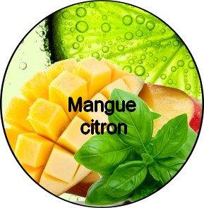 Galet parfumé Mangue Citron