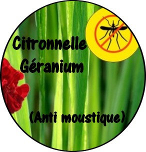 Galet parfumé citronnelle géranium