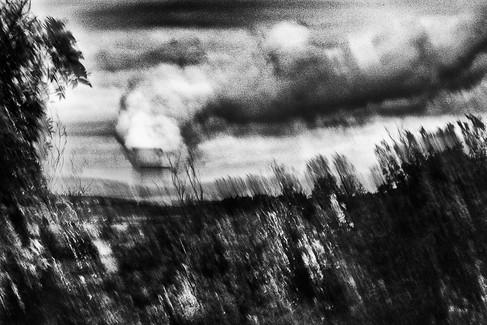 Landscape 09