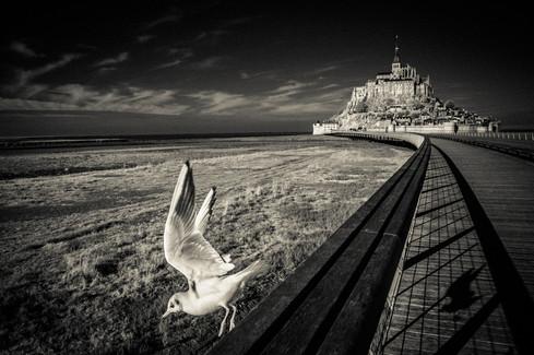 ©VÉRONIQUE PEYLE