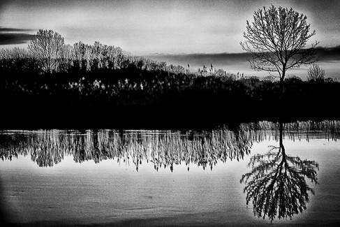Landscape 05