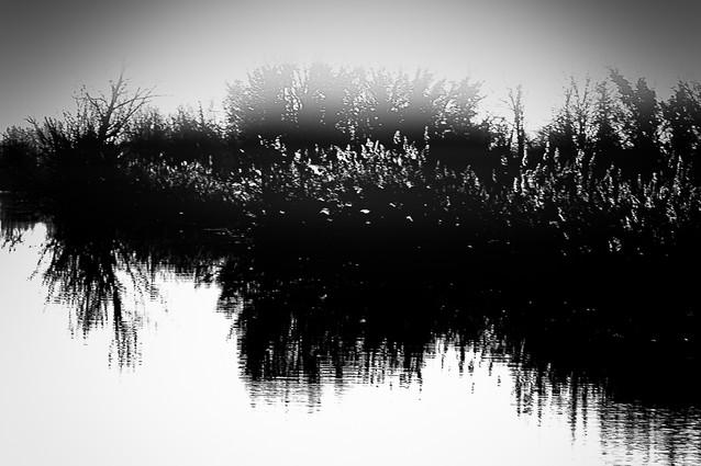 Landscape 06
