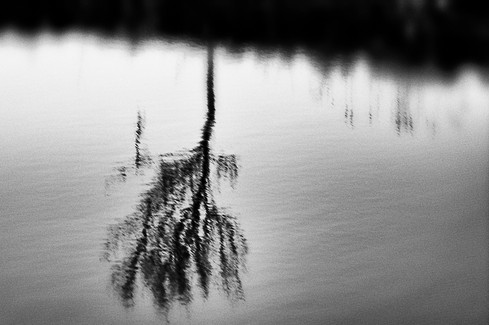 Landscape 08