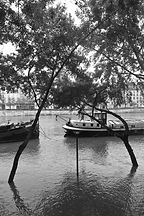 Seine®francoiselarouge_(8).jpg
