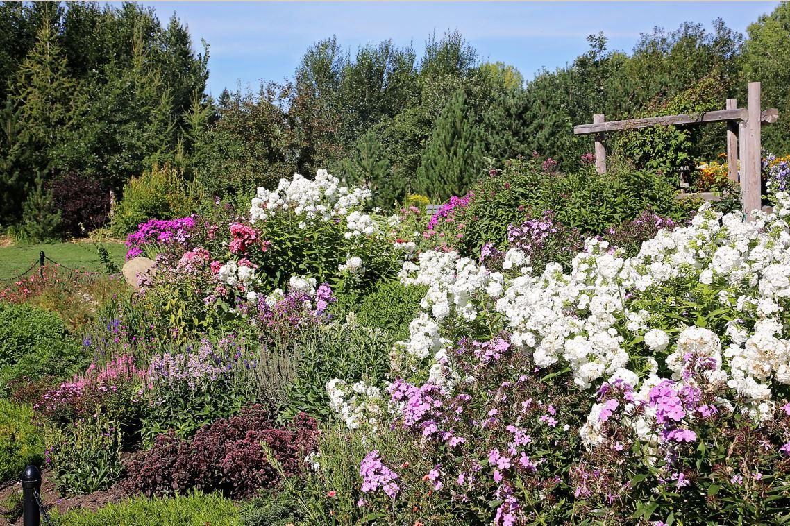 Oval Garden