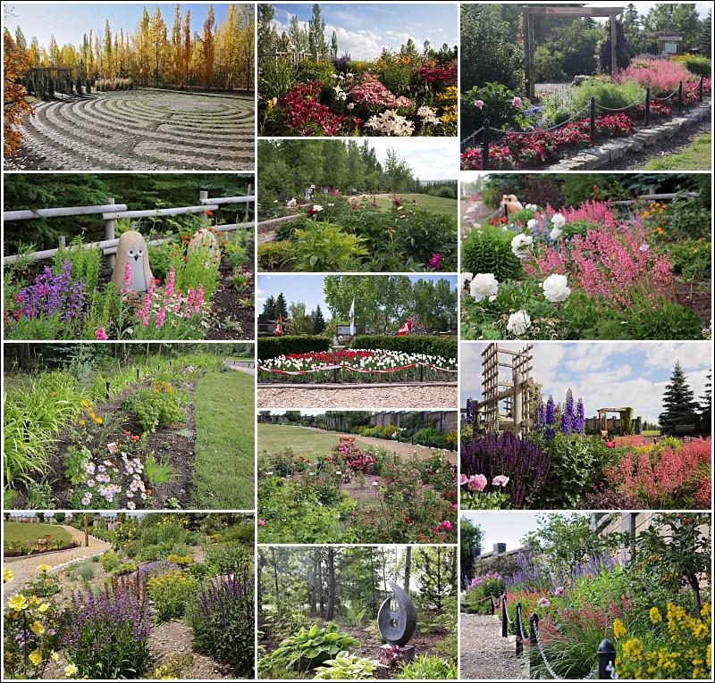 Silver Springs Botanical Gardens 2018 Calendar