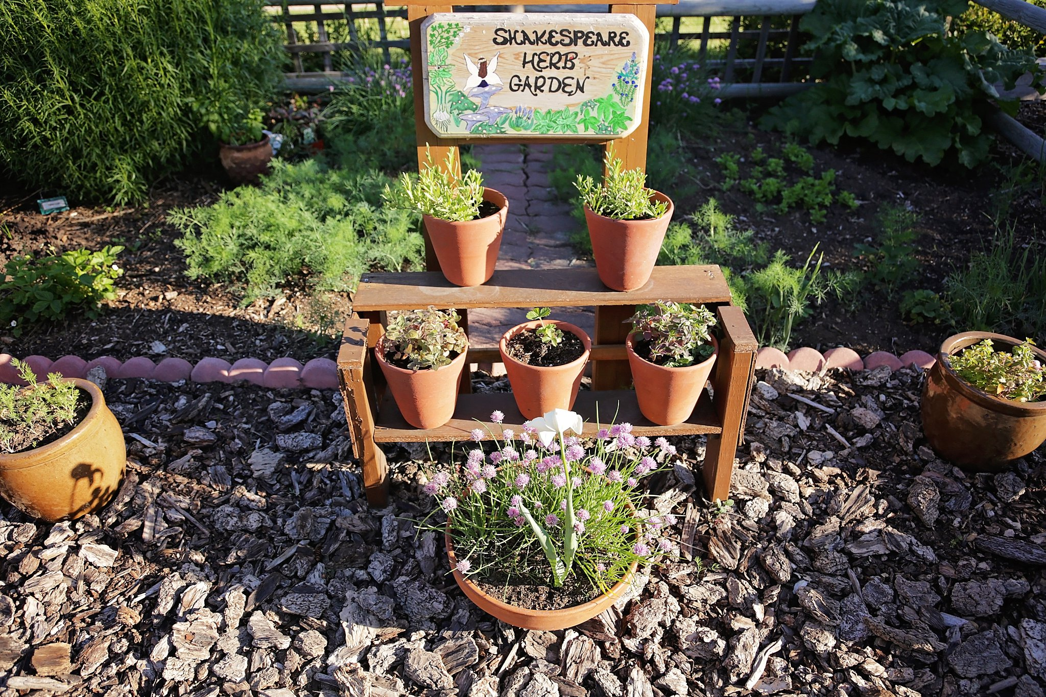 Shakespeare herb garden