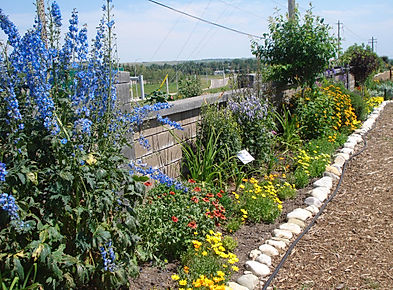 Wall Garden, Botanical Gardens of Silver Springs, Flowers, Garden