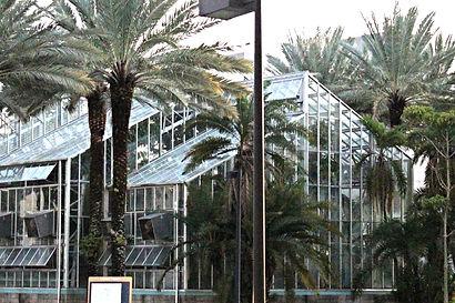 FIU Werheim Conservatory