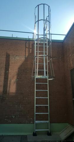 ladder + cage