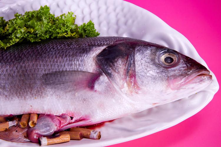 Fish abject.jpg