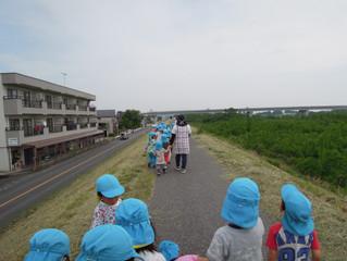 さくら組(散歩)♪