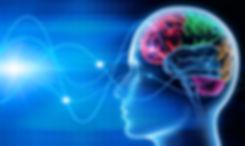 cerebro 4.jpg
